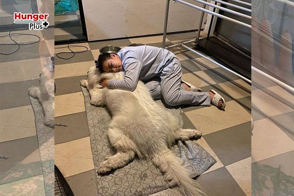 บุ๋ม-ปนัดดา ควัก 8 หมื่นรักษา ลุงเค็ม หมาแสนรัก