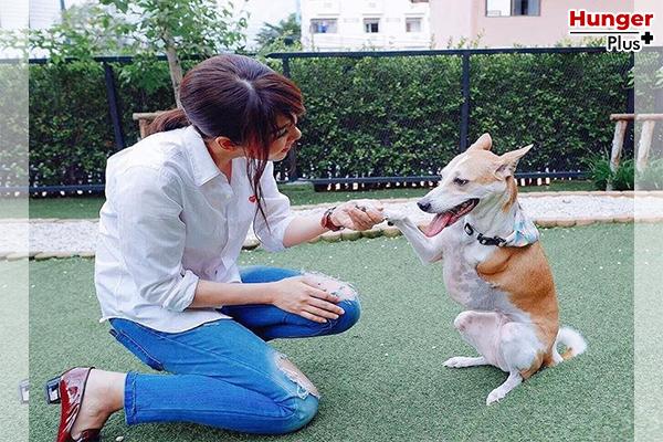 พามาส่องไอจีคนดัง ! มาดูกัน ดาราคนไหนที่เป็น Dog Lover ตัวยง ! ดาราดังคนรักหมา ข่าวดารา ข่าวบันเทิง ข่าวออนไลน์ ดาราดังคนรักหมา